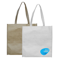 PPB001 PAPER BAG NO GUSSET