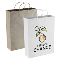 PPB007 PAPER KRAFT SHOPPING BAG